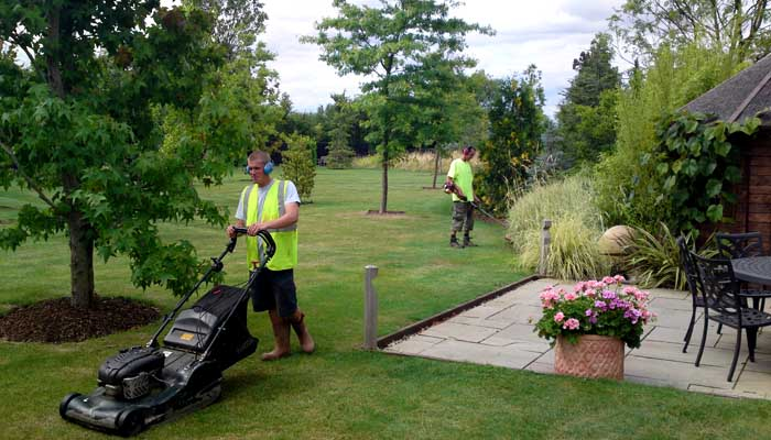 Experts in Garden Maintenance